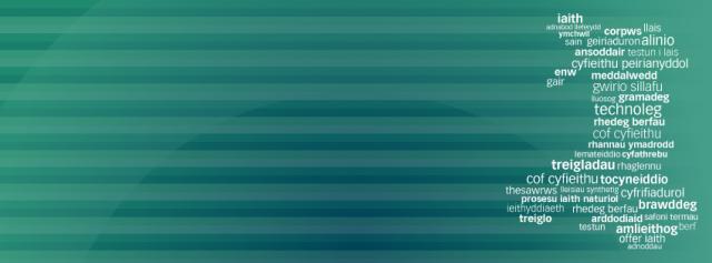 Techiaith Banner