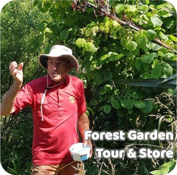 Bruce giving a tour of his beautiful forest garden!